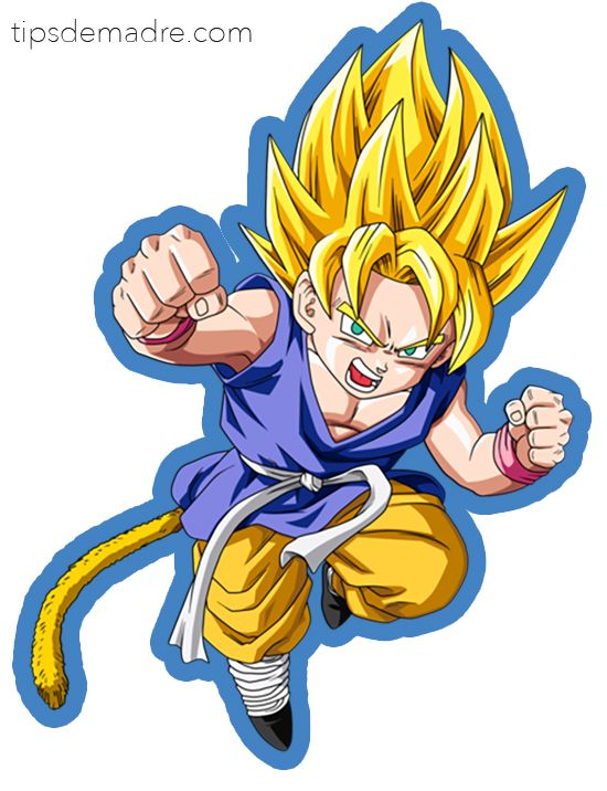Un Cumple De Dragon Ball Z Kame Hame Ha Goku Nino Cumpleanos