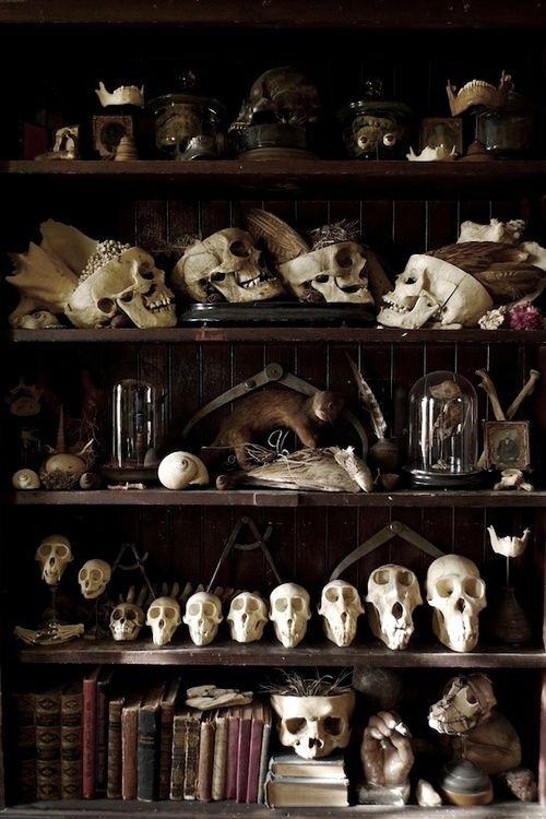 Dark display with skulls