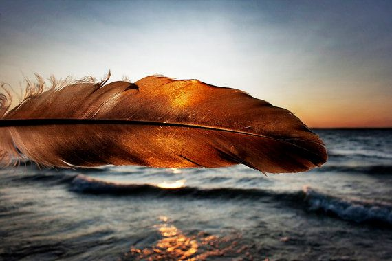 Feather Sunset 8x12 Fine Art Photograph Home by STILphotography, $25.00