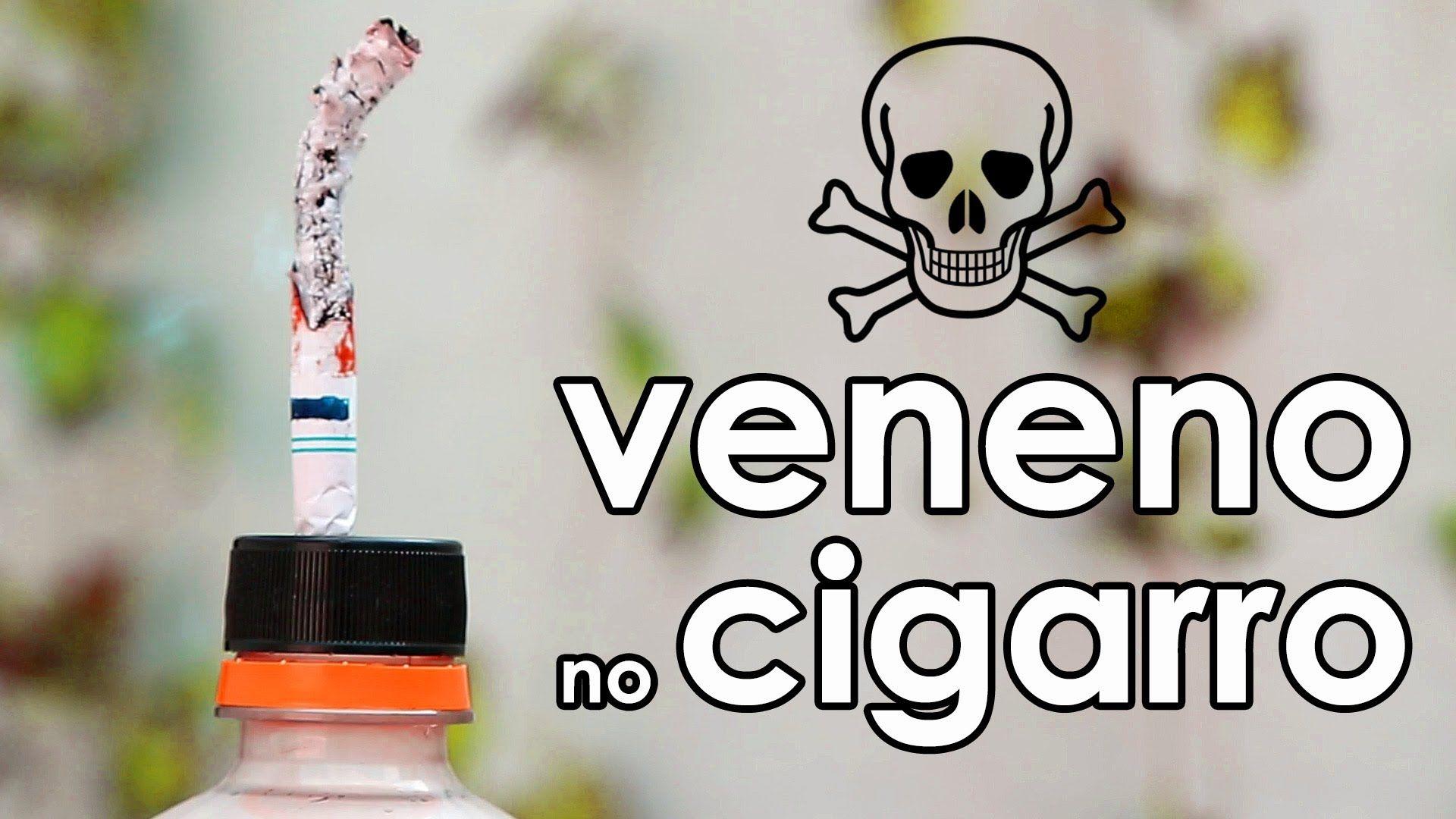 Conheca Os Venenos Do Cigarro Experimento De Biologia Biologia
