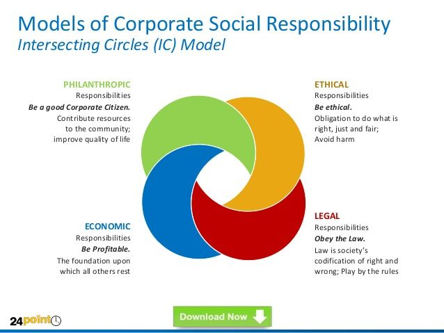 Corporate Citizenship, or Corporate Social Responsibility (CSR)