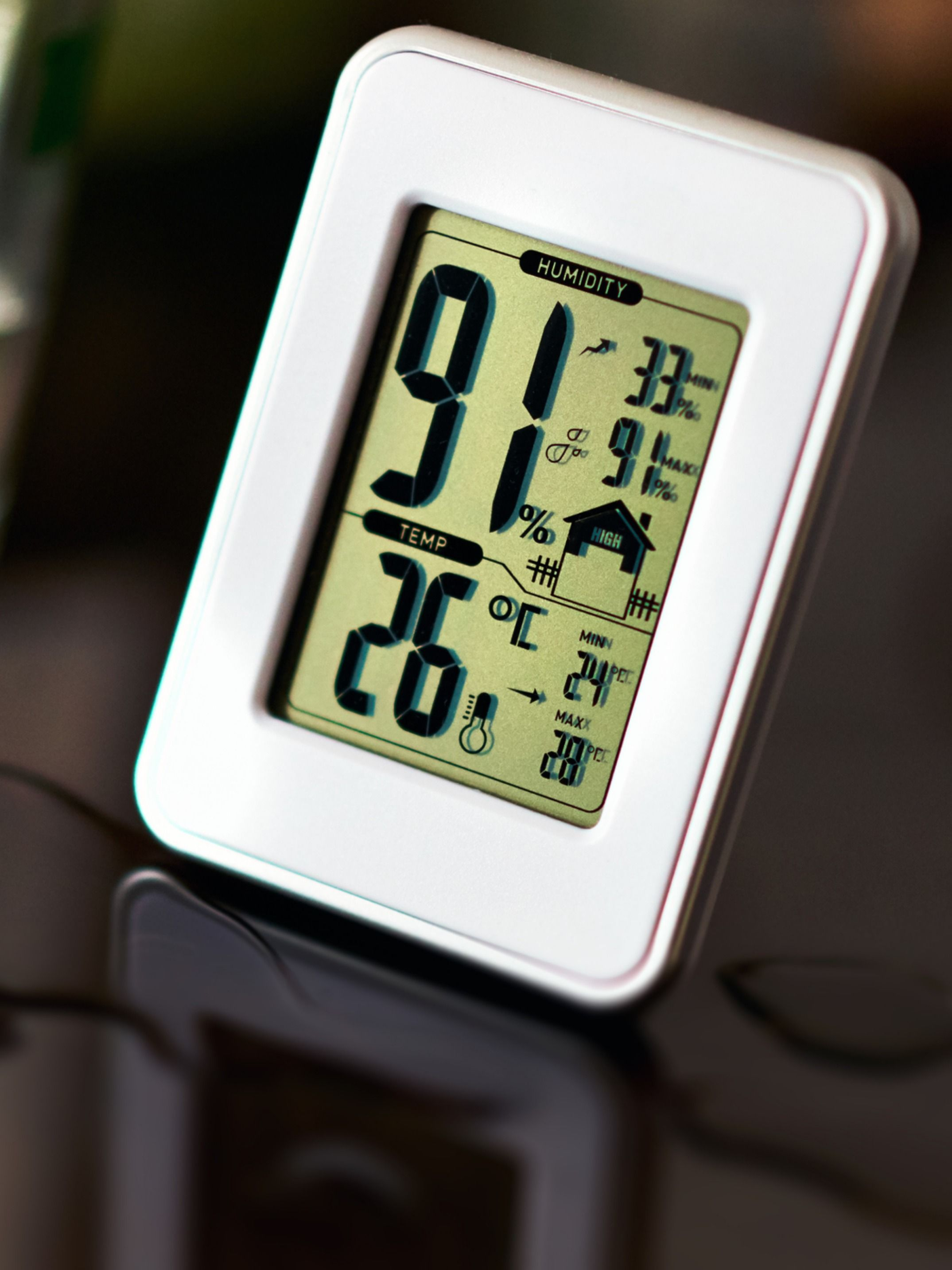 Why You Should Monitor the Humidity Levels In Your Home
