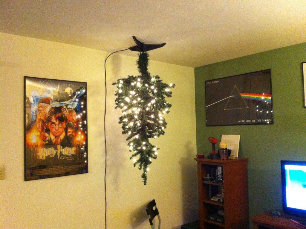 Cat And Christmas Tree On Ceiling Google Search Www