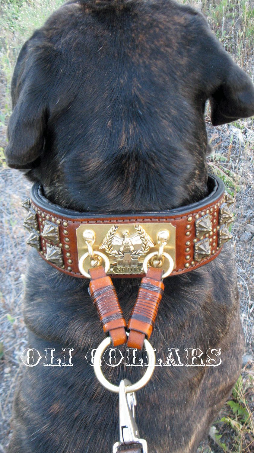 Anticuus Collar Crafted From Vintage Dog Collars Vintage Dog