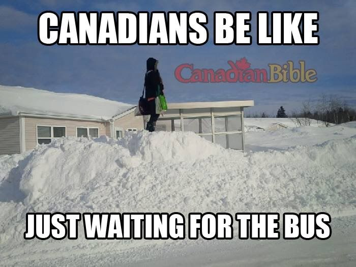 Canadian Problem Just Waiting For The Bus Canada Funny Canada Memes Canada Jokes