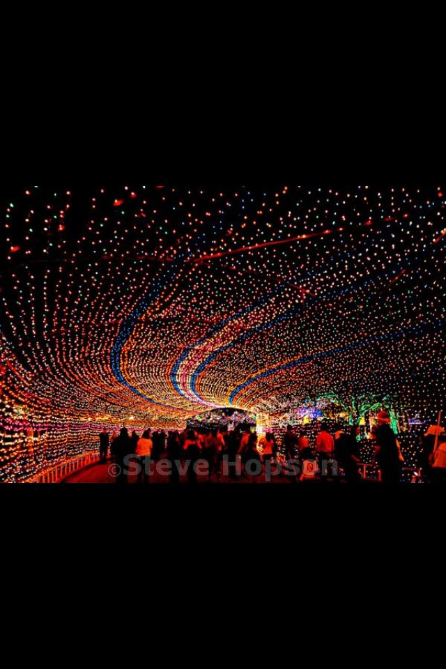 Trail of Lights, Austin Texas Ohh...now I wanna go see this whenever they put it up!