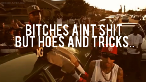 bitches aint ahit but hoes and tricks
