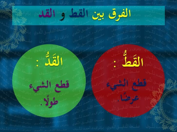 القط القد Arabic Language Learning Arabic Words