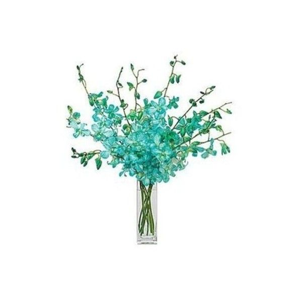 Imageshack 55191421.jpg ❤ liked on Polyvore featuring flowers, blue, decor and fillers