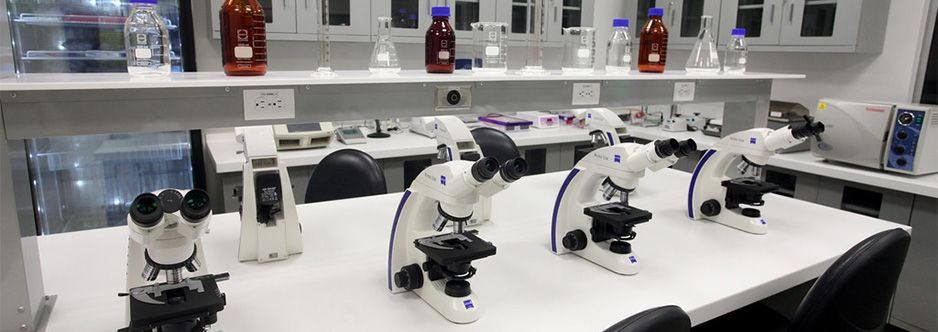 Cklaboratories regional medical reference laboratory