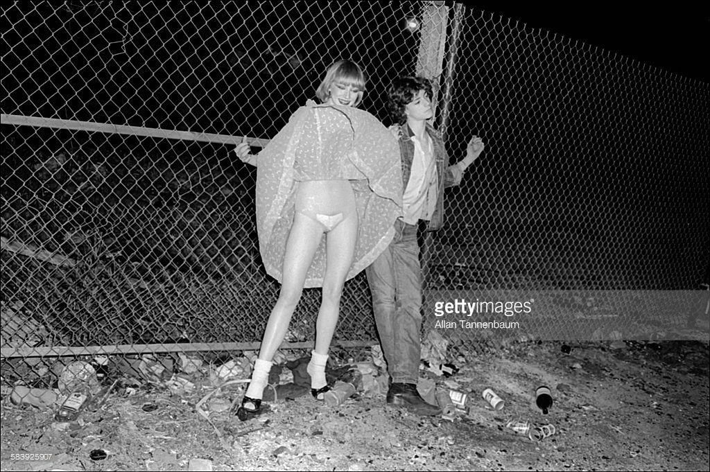 fence windy skirts