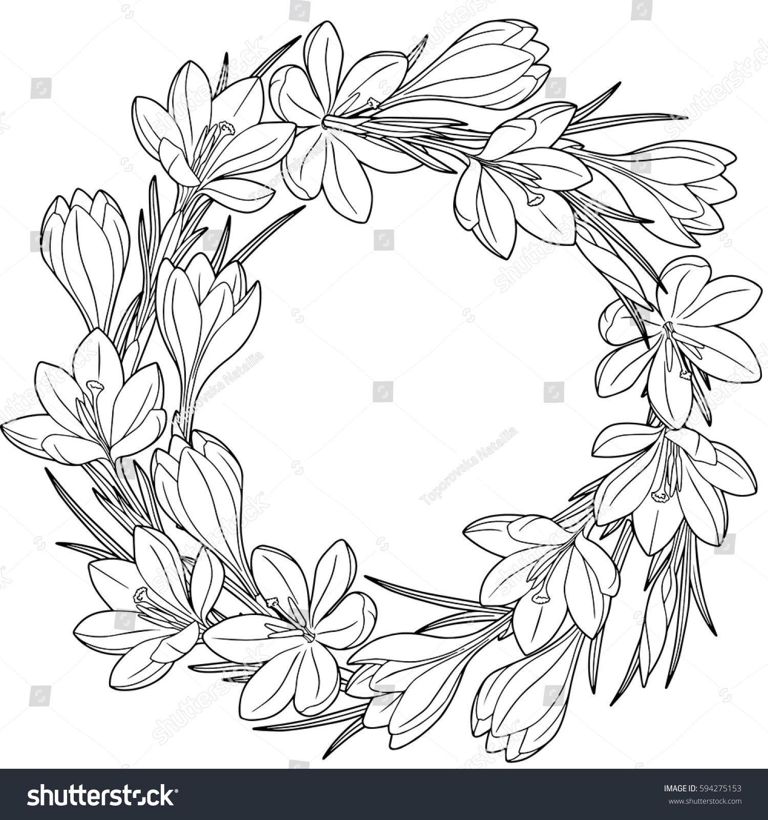 Photo of Стоковая векторная графика «Spring Flower Wreath Crocuses Vector Isolated» (без лицензионных платежей), 594275153