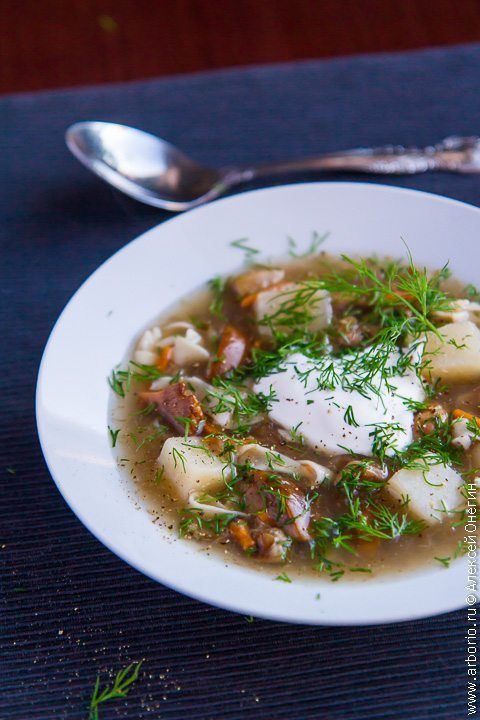 Фото к рецепту Суп из свежих грибов с домашней лапшой ...