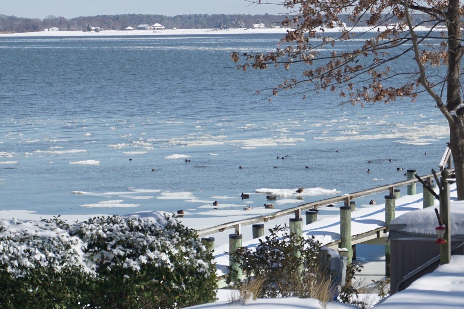 Cobb island maryland real estate snowy waterfront