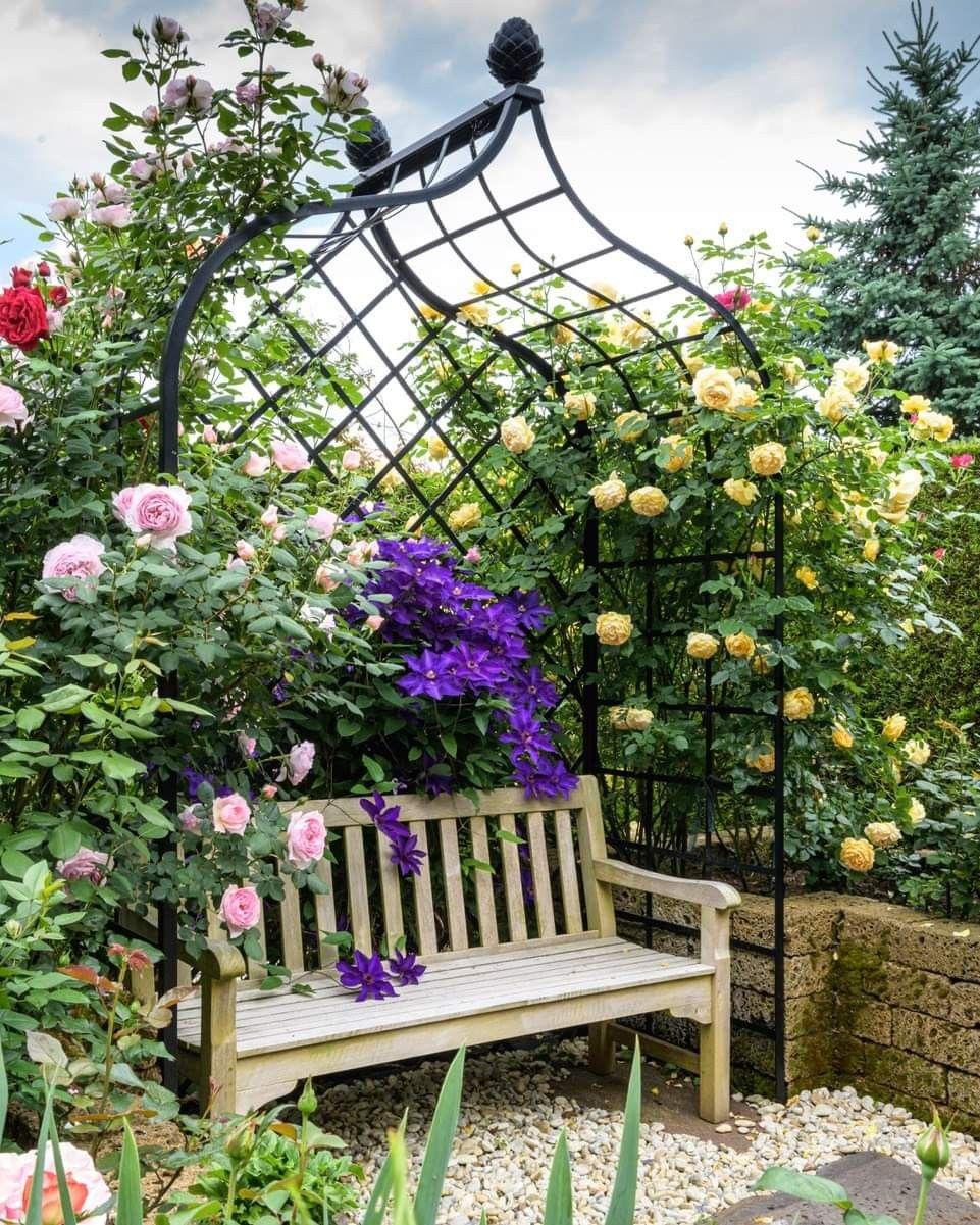 Pin Von Ha Nga Auf Sommer Garten Sommer
