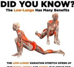 The Low Lunge Has many Benefits - Fitness Facts - Hilarious Pins #health #fitness #humor #workout