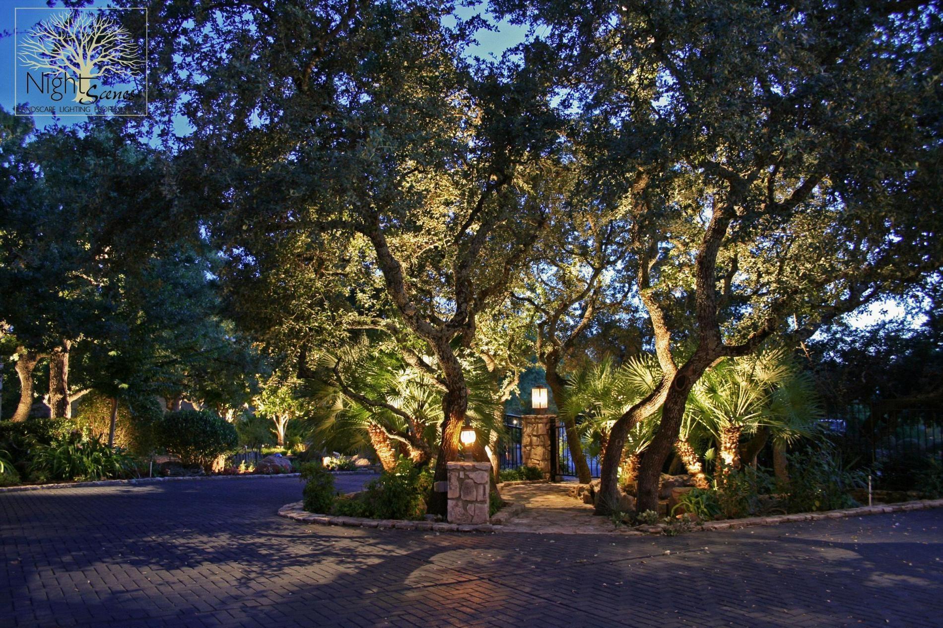 Landscape Lighting Pictures. carldrogo.com | Lighten Up ...