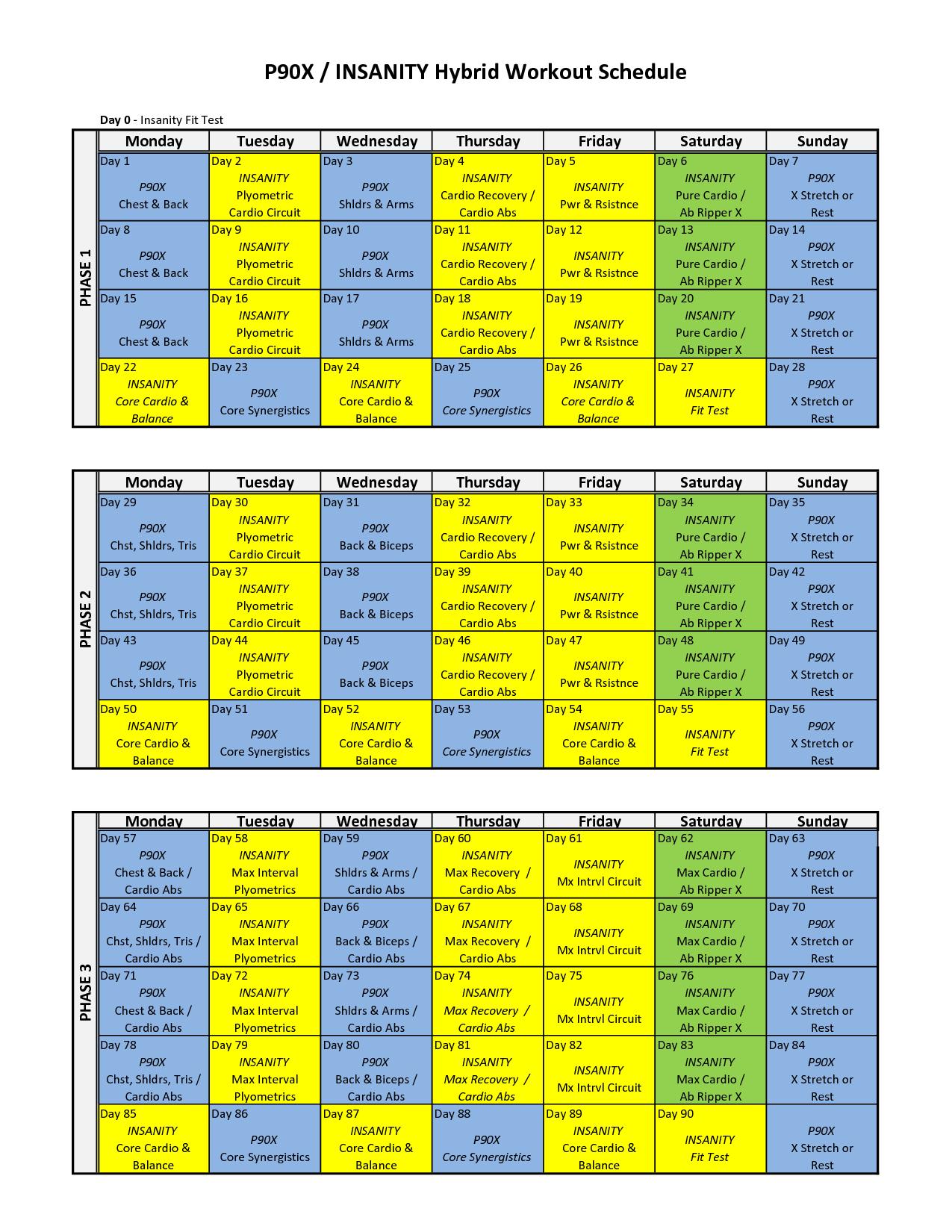 P90x Insanity Hybrid Workout Sheets Printable