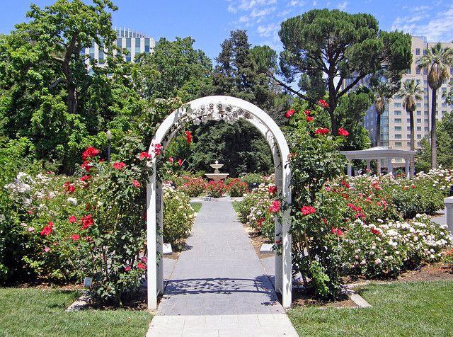 Bon World Peace Rose Gardens Sacramento CA  Where Our Wedding Ceremony Took  Place, Such A Beautiful Day!