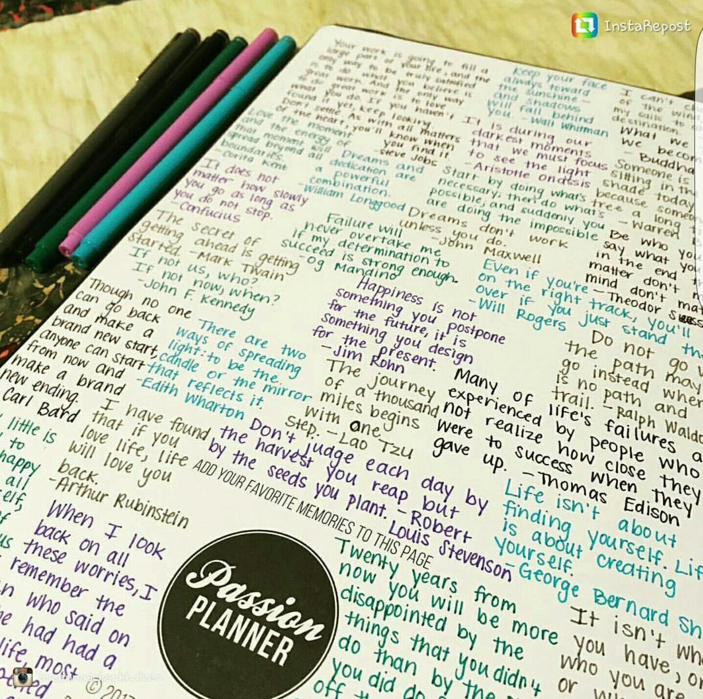 Pin By Samantha Schilthuis On Passion Planner Tips And