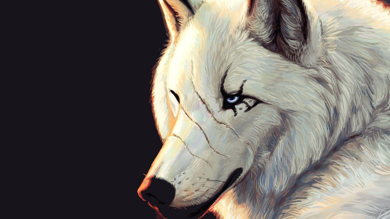 Hd wallpaper wolf - Free Moving Wolf Wallpaper Wallpapers Hd Desktop Wallpapers Free Online