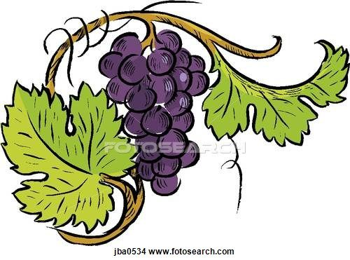 Fruit Embroidered Iron On Applique Patch Vine Vineyard Grapes Wine