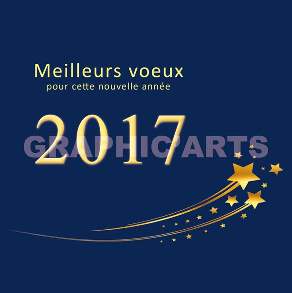 Populaire Carte de voeux 2017 Etoile Filante | Cartes de voeux 2018  JI44