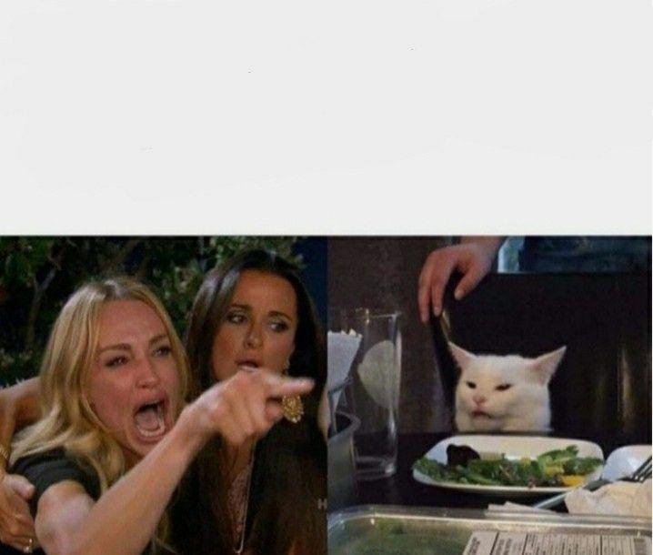 Pin De Yeethaw Em Meme Templates Memes Engracados De Gato Memes Hilarios Memes De Desenhos Animados