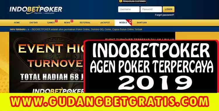 INDOBETPOKER - Merupakan Agen Poker Online terbesar dan