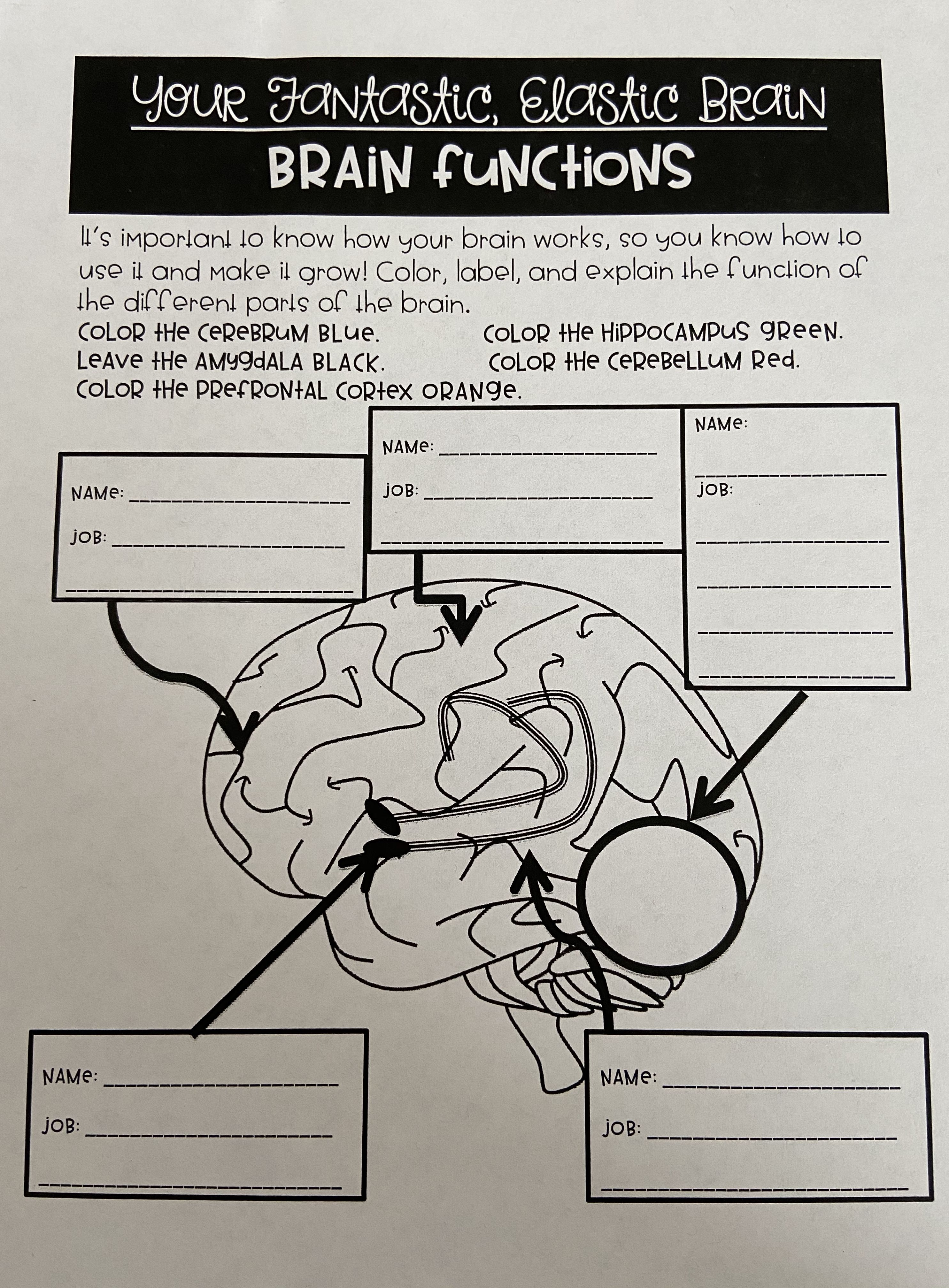 Pin On Our Growing 4th Grade Brain