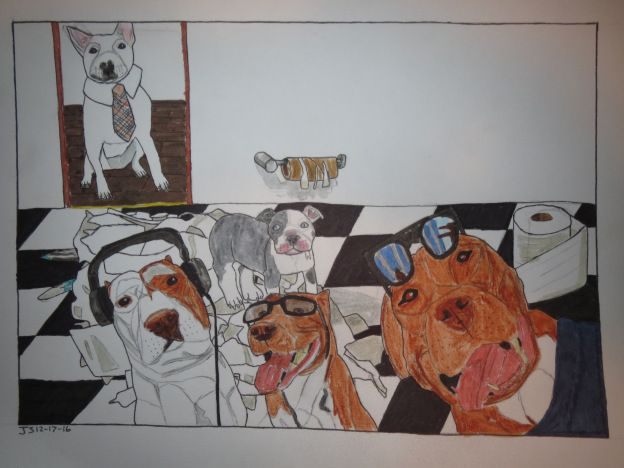 bully dogs and toilet paper