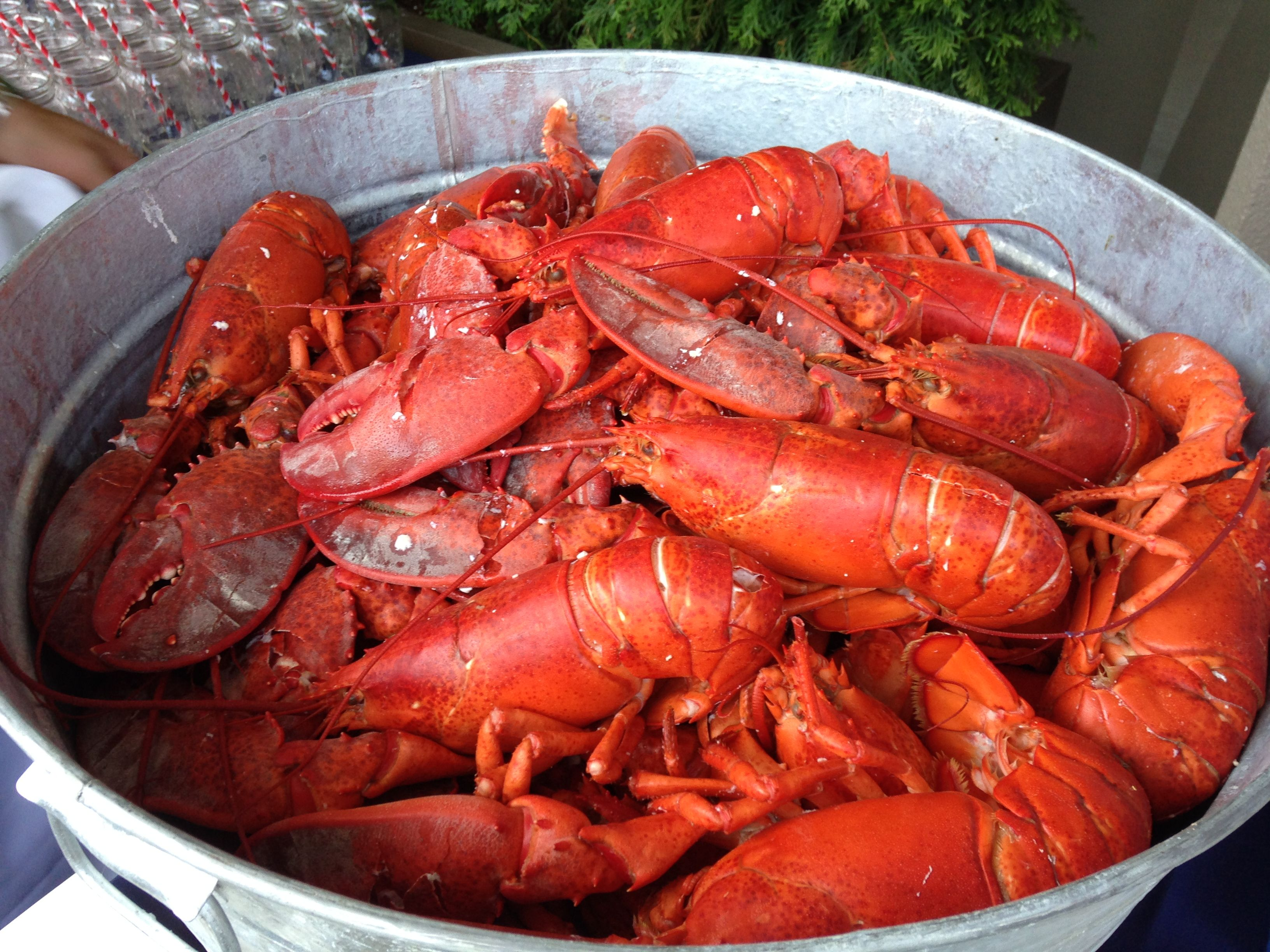 It Doesn T Get More New England Than A Big Lobster Dinner In The Summer Sun Lobster Dinner Best Comfort Food Biggest Lobster