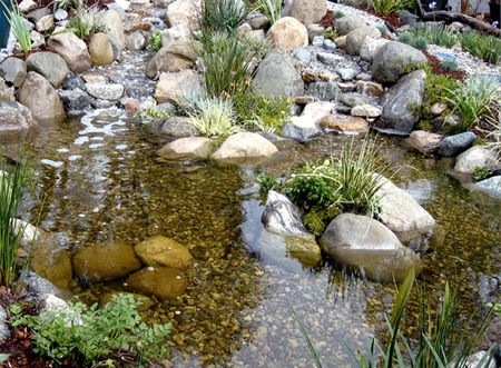 Backyard waterfalls and ponds double waterfalls feed a for Natural koi pond design