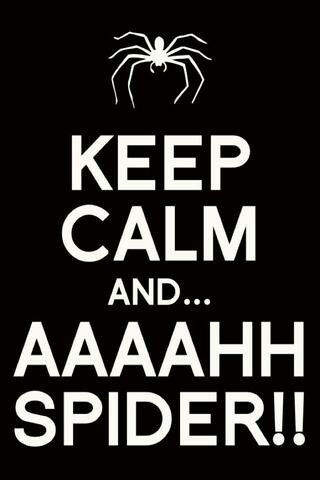 Where Keep Calm Funny Keep Calm Calm