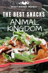Best Snacks at Animal Kingdom Walt Disney World  Polka Dots and Pixie Dust Disney Vacation Blog The Best Snacks at Animal Kingdom We pulled together a quick wrap up of th...