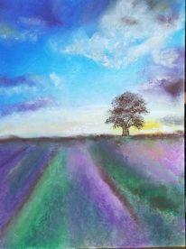 Lavendelfeld Pastell Malerei Pastell Kreide Pastellkreide Kunst