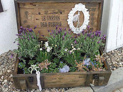 Vintage pflanzkasten rahmen french shabby minigarten kr uterkiste fairy garten - Gartenhaus shabby chic ...