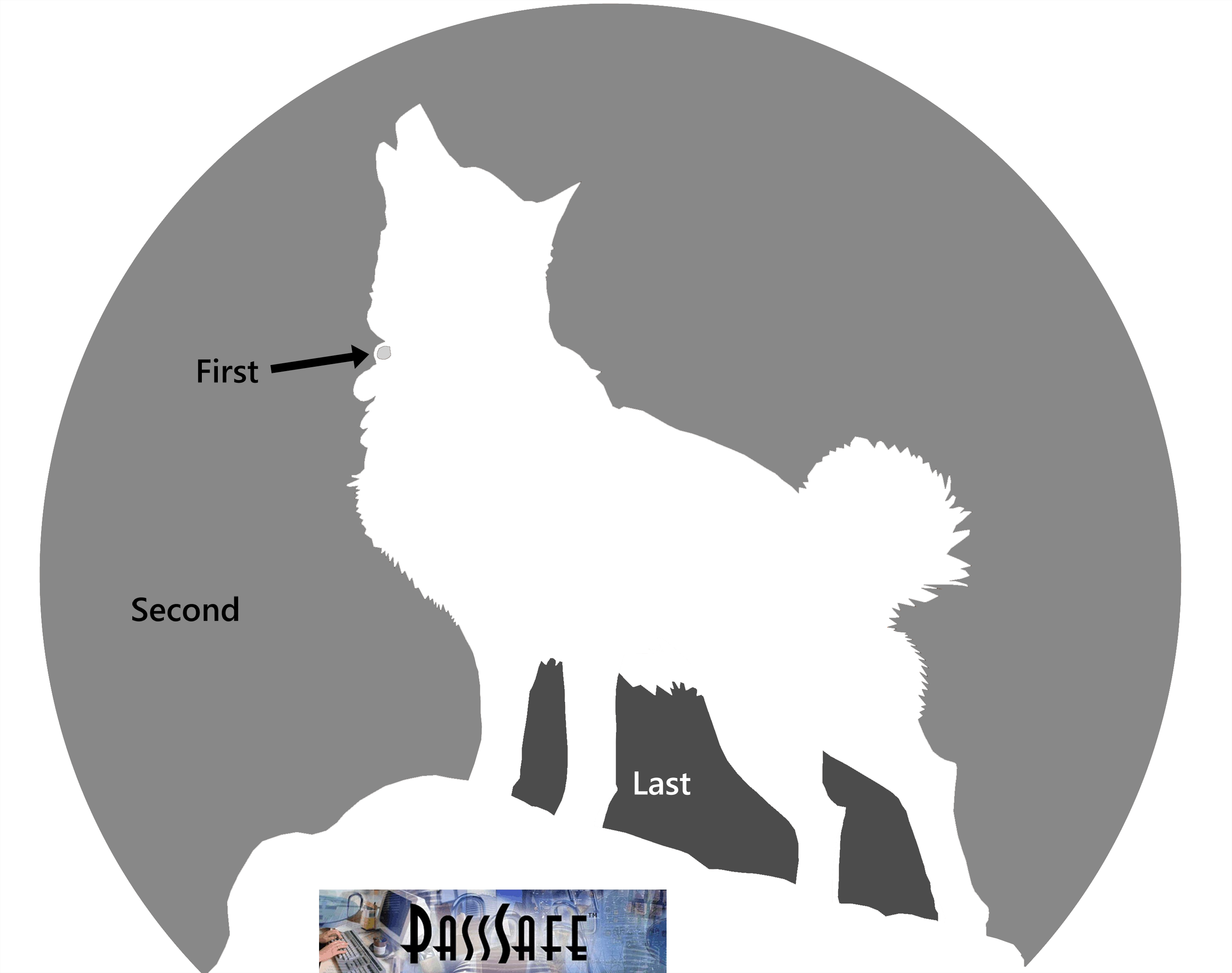 wolf pumpkin carving patterns | Howling Wolf Pumpkin Carving ...