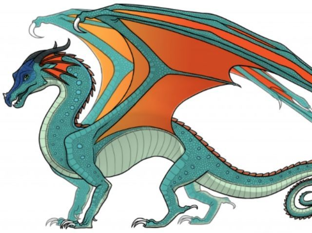 I Got Rainwing Kinkajou What Wings Of Fire Character Are You