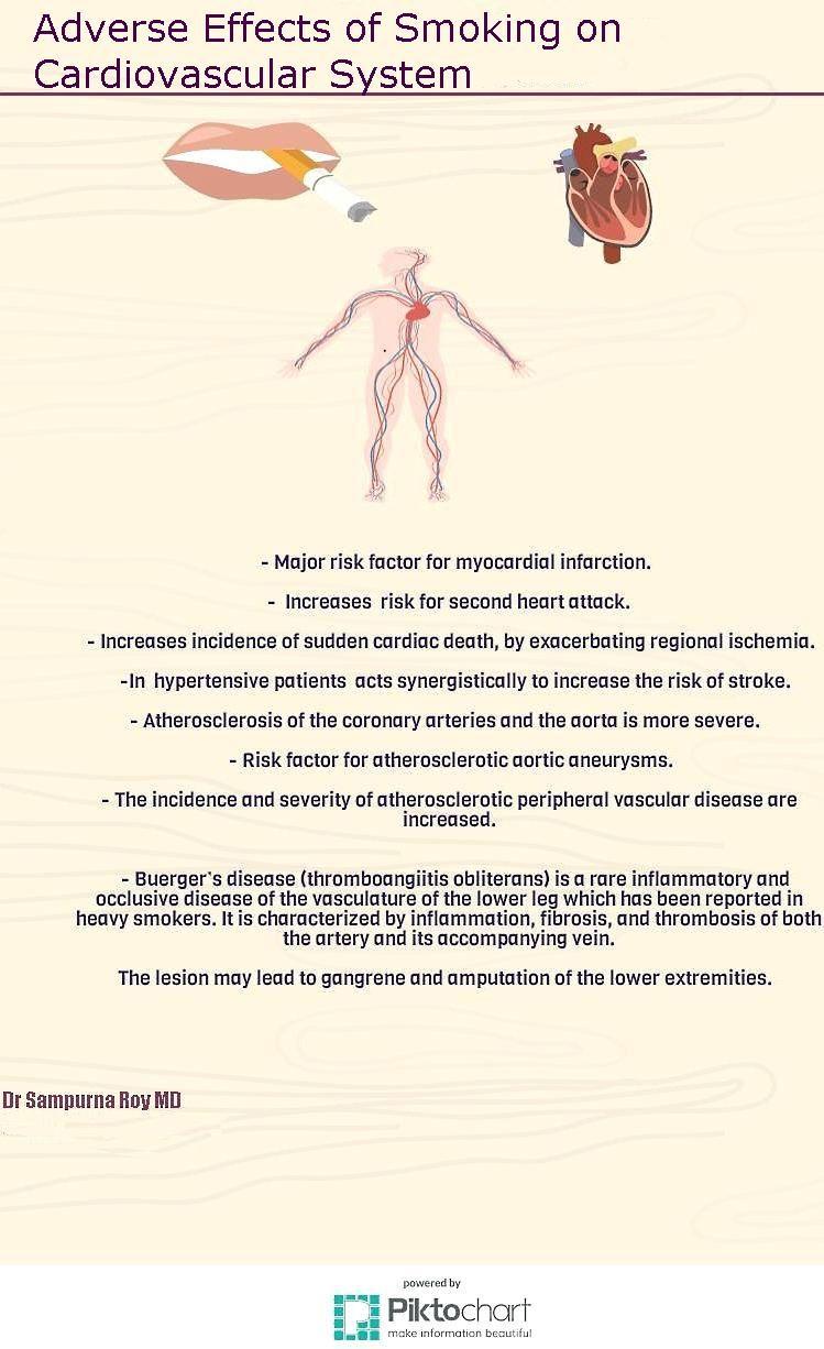 Adverse Effects of Smoking on Cardiovascular System   Pathology