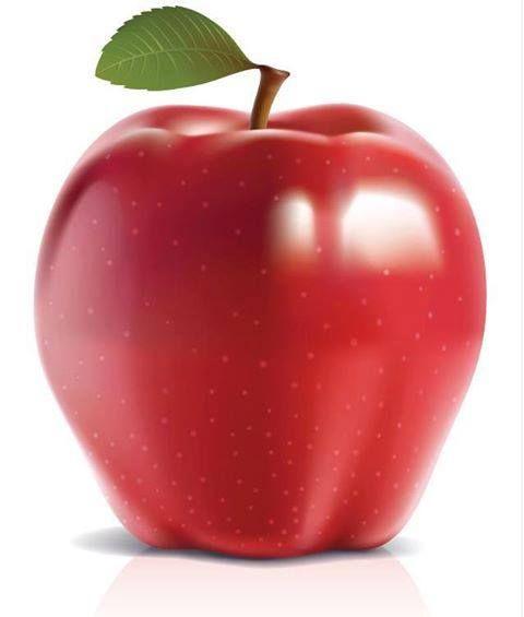 هل تعلم أن أكل تفاحة بشكل يومي يبعدك عن طبيب الأسنان يحتوي عصير التفاح على مواد تقتل 80 من البكتيريا مما يؤدي إلى حماية أسنان Vector Food Apple Vector Apple