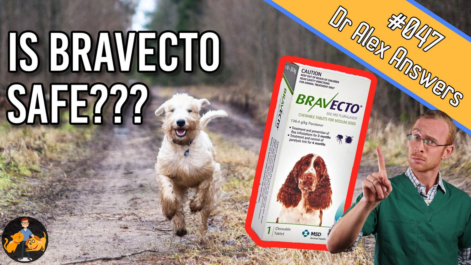 Is Bravecto Safe for Dogs (the true side effect risks