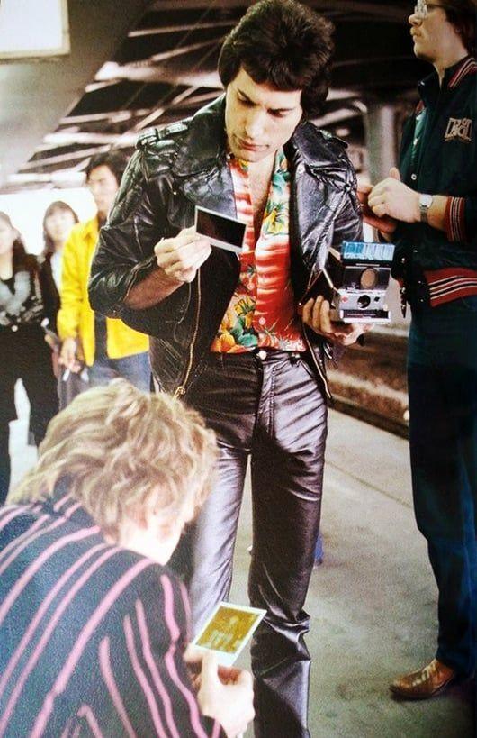 Freddie Mercury, Queen, and rock image #freddiemercuryquotes Freddie Mercury, Queen, and rock image #freddiemercuryquotes Freddie Mercury, Queen, and rock image #freddiemercuryquotes Freddie Mercury, Queen, and rock image #freddiemercuryquotes
