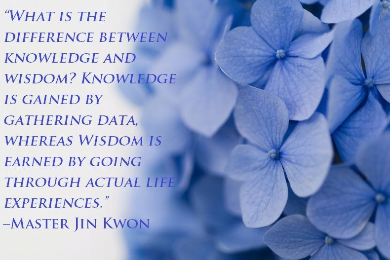 What Is The Difference Between Knowledge And Wisdom Knowledge Is