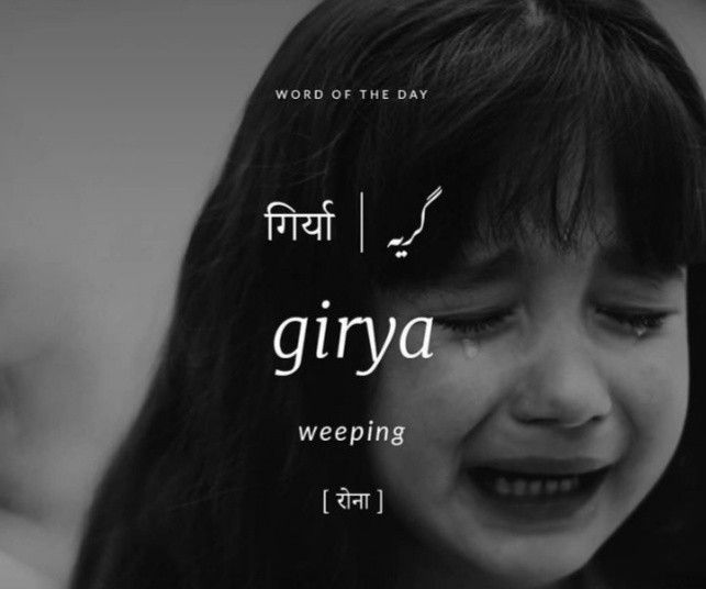 Urdu....and Related Words image by Hena Ahmed Khan | Hindi ...