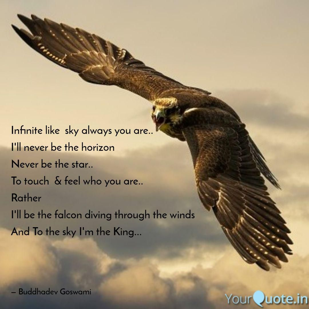 Image Result For Falcon Quotes Sky King Falcon Sky