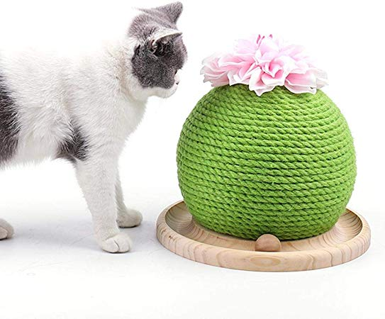 AmazonSmile Volwco Cactus Cat Scratcher Ball, Creative
