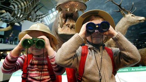 Actividades para niños en el Museo de Historia Natural de Londres / Foto: visitlondon