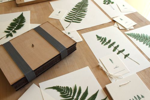 Barnes ferns | Pressed flowers diy, Letterpress, Barnes ...