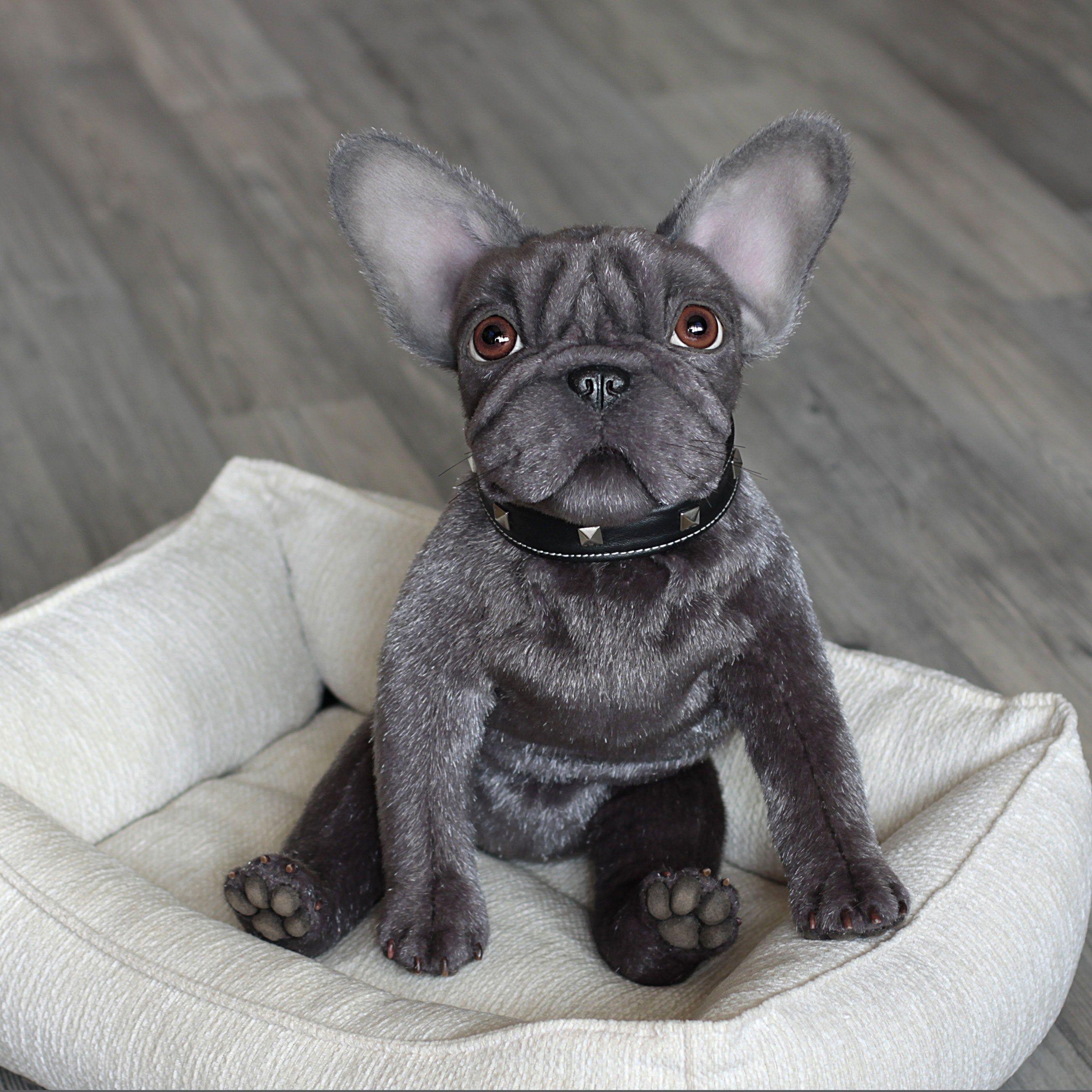SoldStuffed gray French bulldog puppy 13 inch Soft Etsy